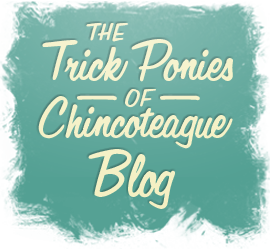 The Trick Ponies of Chincoteague Blog